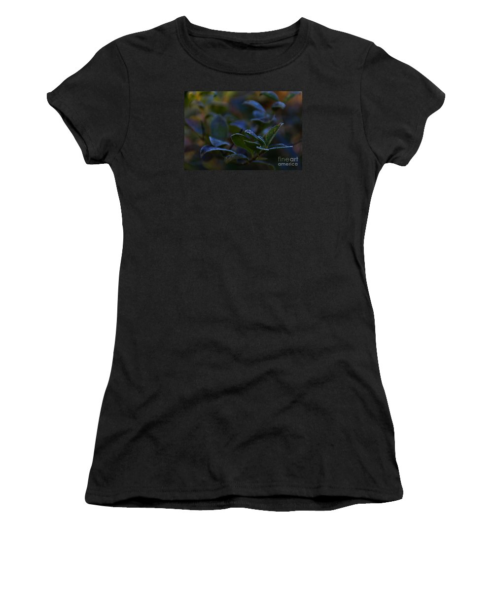 Plant Women's T-Shirt (Athletic Fit) featuring the photograph Frost by Linda Shafer