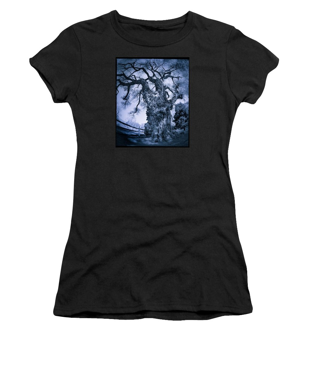 Women's T-Shirt (Athletic Fit) featuring the photograph Fruita Tree by Thomas Langton