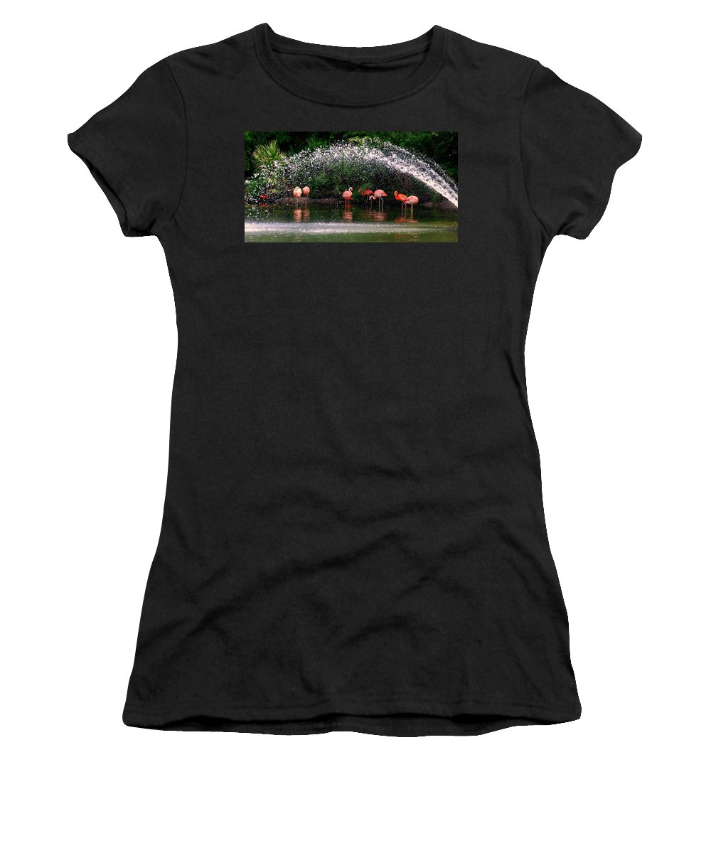 Flamingo Women's T-Shirt (Athletic Fit) featuring the photograph Gathering Together by Susanne Van Hulst
