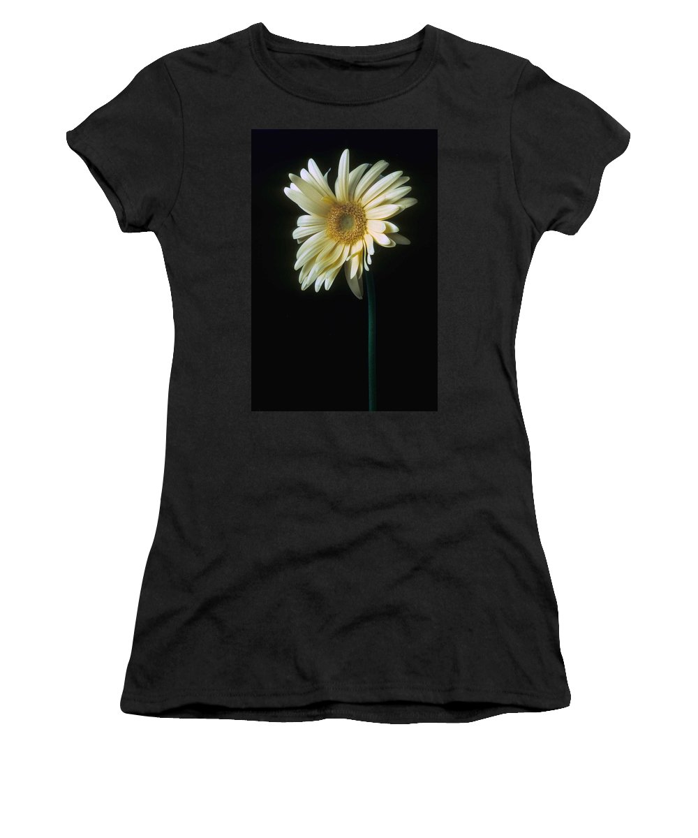 Gerber Women's T-Shirt (Athletic Fit) featuring the photograph Gerber Daisy by Laurie Paci