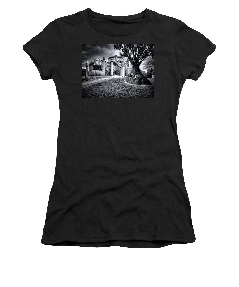 Architecture Women's T-Shirt featuring the photograph Glasshouse And Tree by Wayne Sherriff