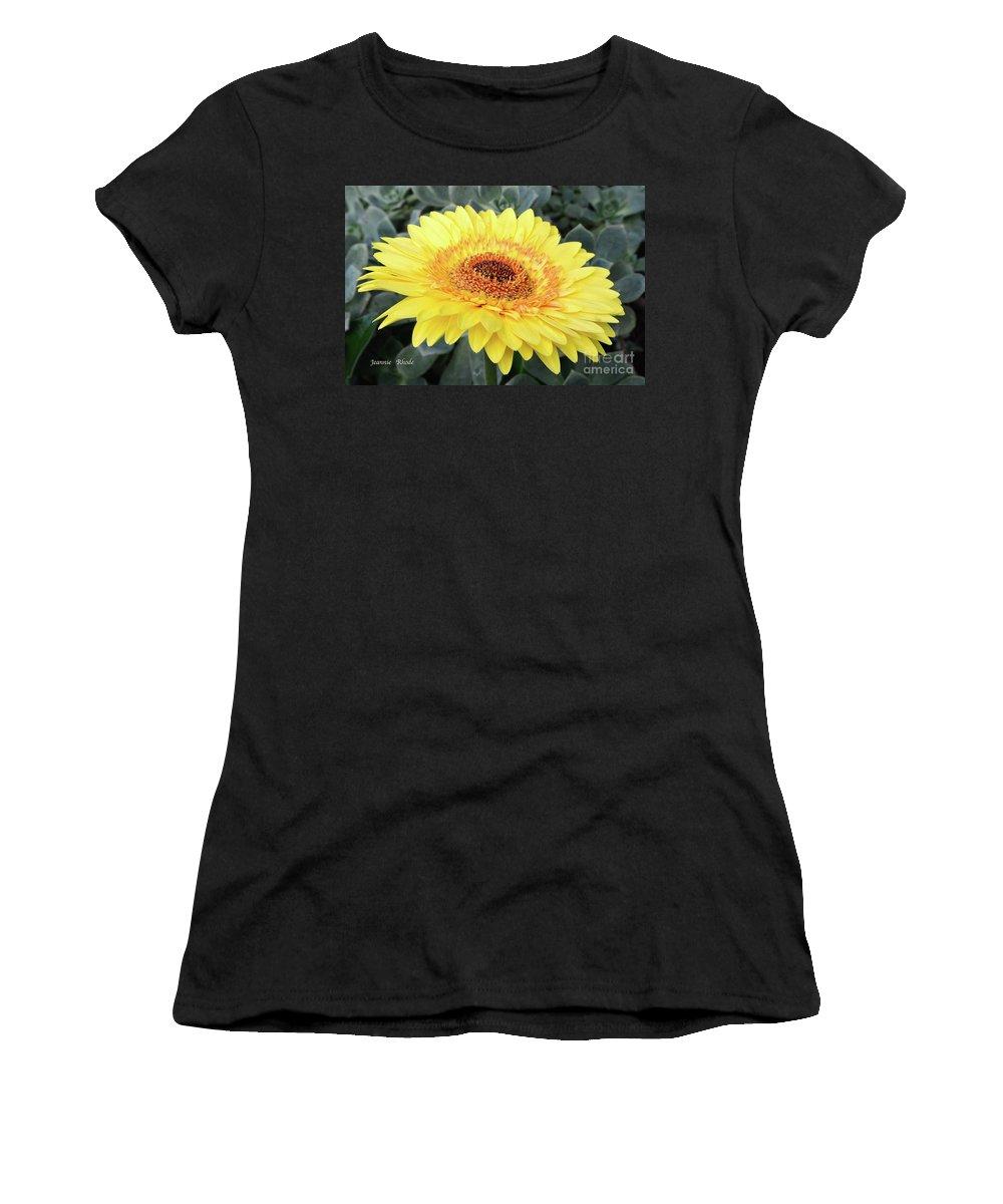 Golden Gerbera Daisy Women's T-Shirt featuring the photograph Golden Gerbera Daisy by Jeannie Rhode