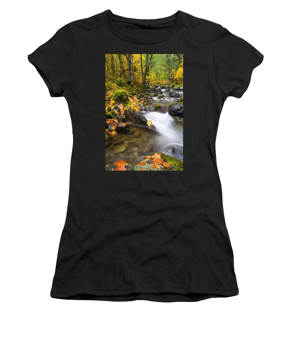 Fall Women's T-Shirt featuring the photograph Golden Grove by Mike Dawson