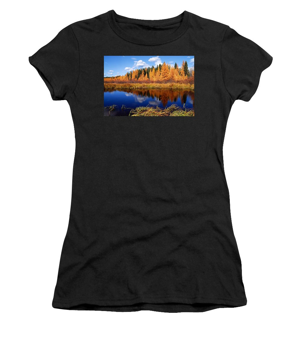 Spruce River Women's T-Shirt (Athletic Fit) featuring the photograph Golden Tamaracks Along The Spruce River by Larry Ricker