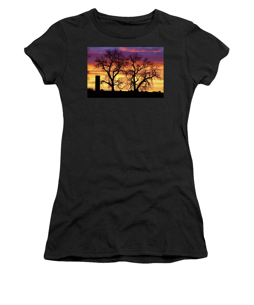 Cows Women's T-Shirt (Athletic Fit) featuring the photograph Good Morning Cows Colorful Sunrise by James BO Insogna