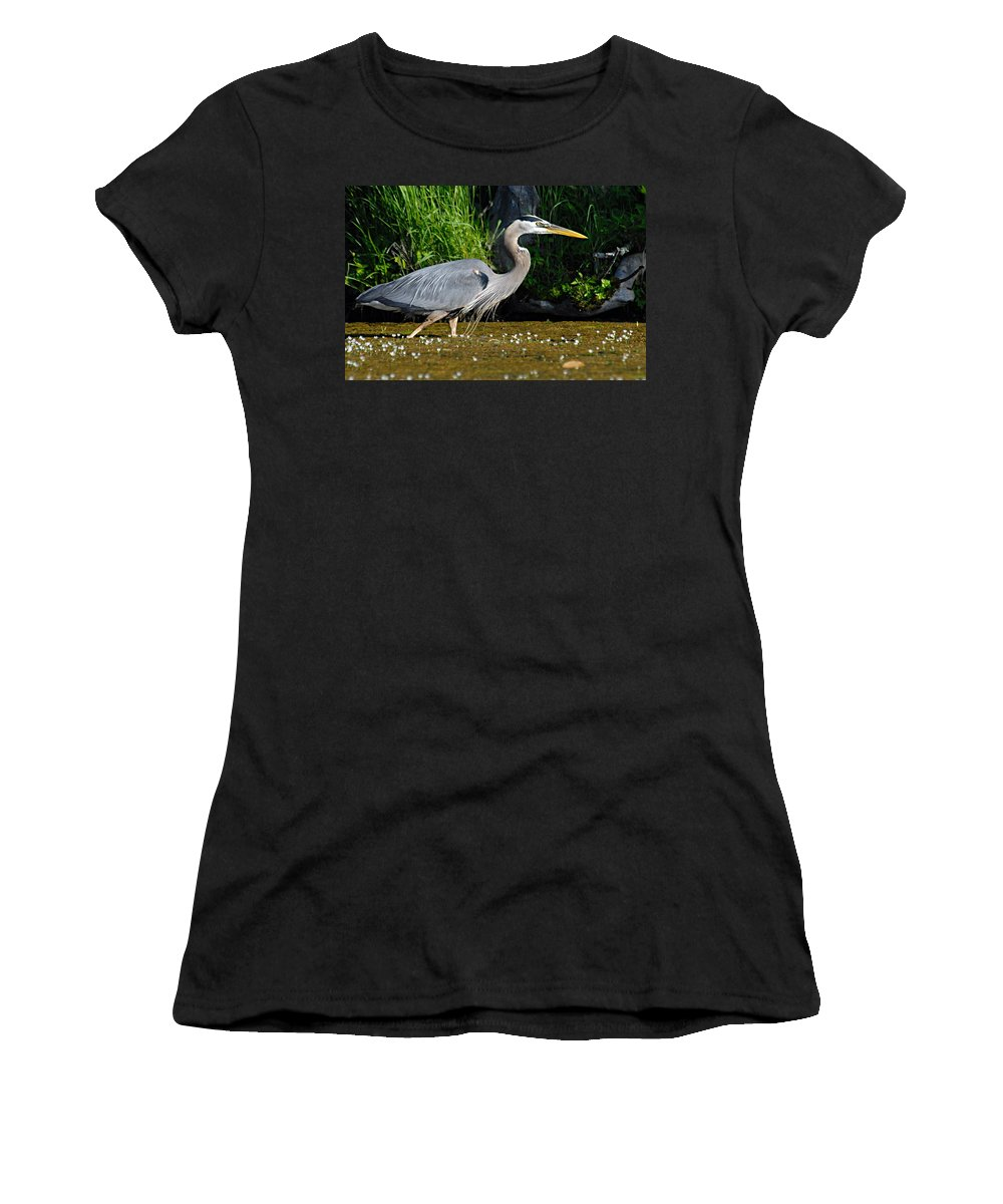 Great Blue Heron Women's T-Shirt (Athletic Fit) featuring the photograph Great Blue Heron by Larry Ricker