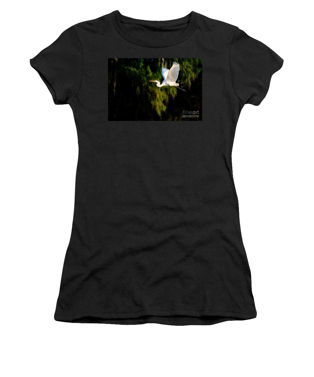 Great Egret Women's T-Shirt (Athletic Fit) featuring the photograph Great Egret by Matt Suess