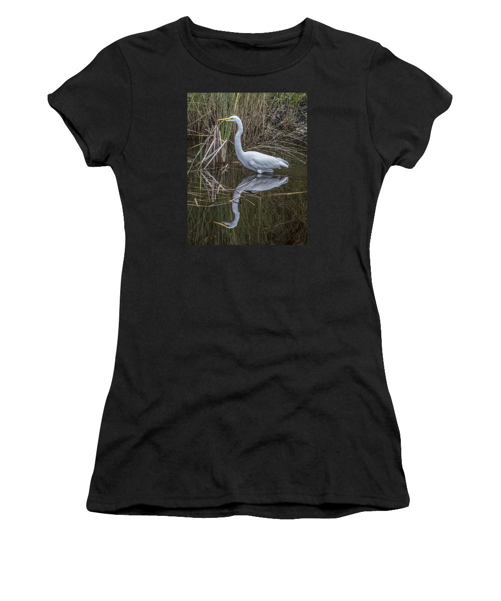 Bird Women's T-Shirt (Athletic Fit) featuring the photograph Great Egret With Reflection by William Bitman