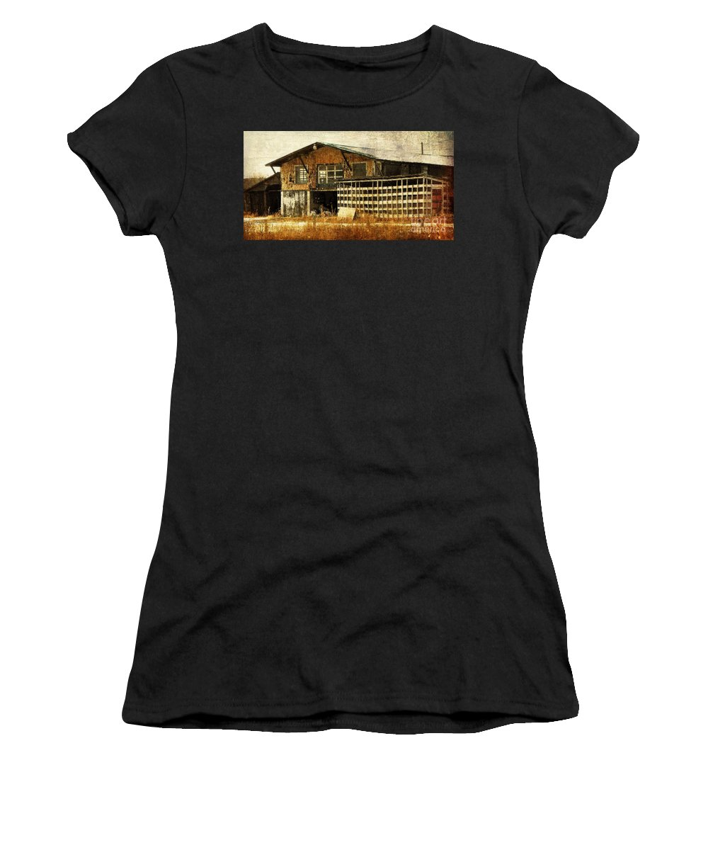 Farm Women's T-Shirt (Athletic Fit) featuring the photograph Hard Labor by Lois Bryan