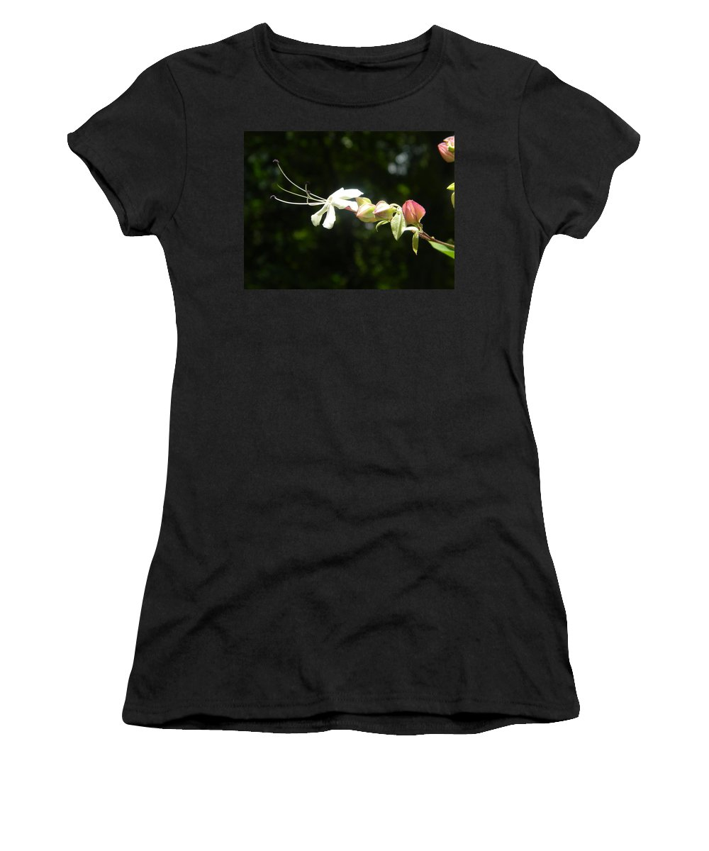 Flower Women's T-Shirt (Athletic Fit) featuring the photograph Harlequin Glory Bower by Alyse Marianna