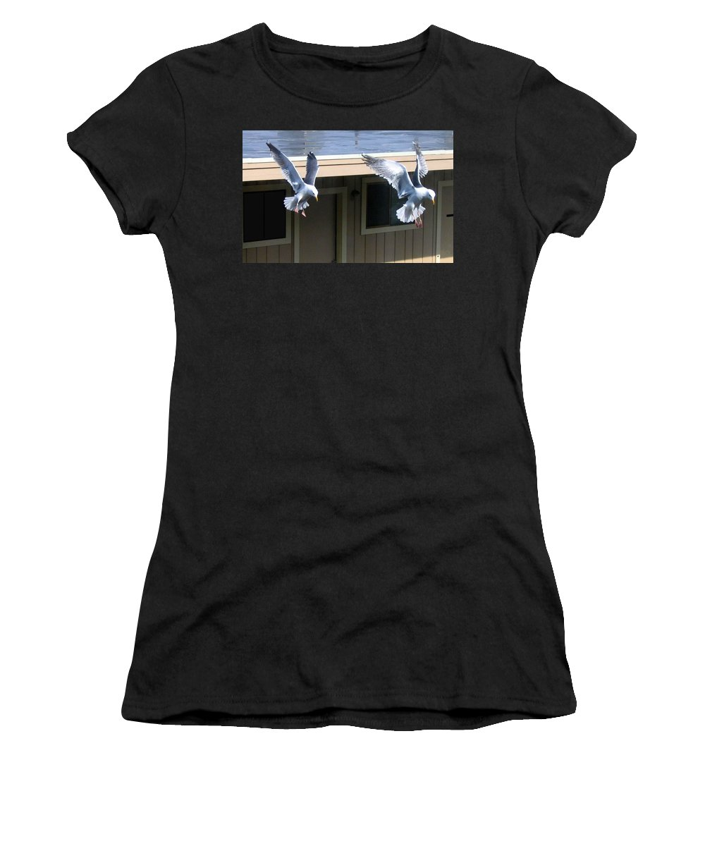 Seagulls Women's T-Shirt (Athletic Fit) featuring the photograph High Spirits by Will Borden