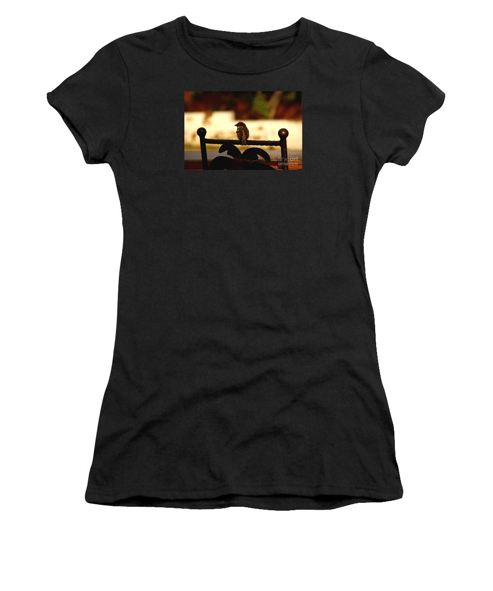 Bird Women's T-Shirt (Athletic Fit) featuring the photograph His Eye Is On The Sparrow by Linda Shafer