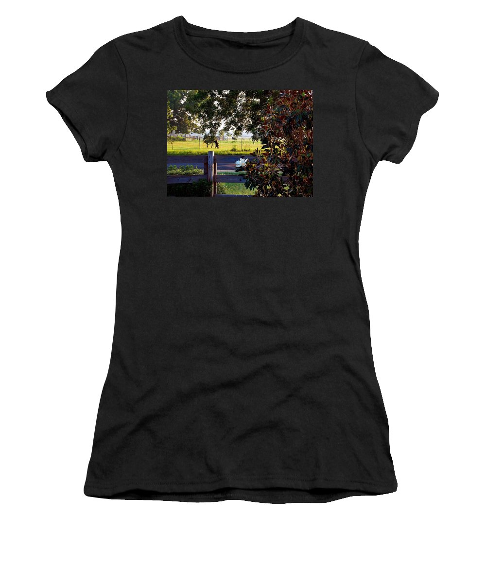 Pelican Women's T-Shirt (Athletic Fit) featuring the photograph Horse And Flower by Michael Thomas