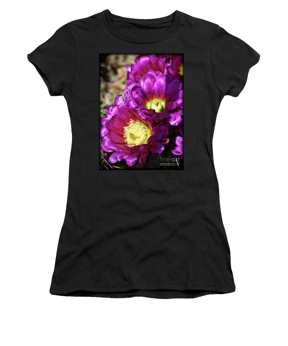 Hedgehog Cactus Women's T-Shirt featuring the photograph Hot Pink Hedgehog by Saija Lehtonen