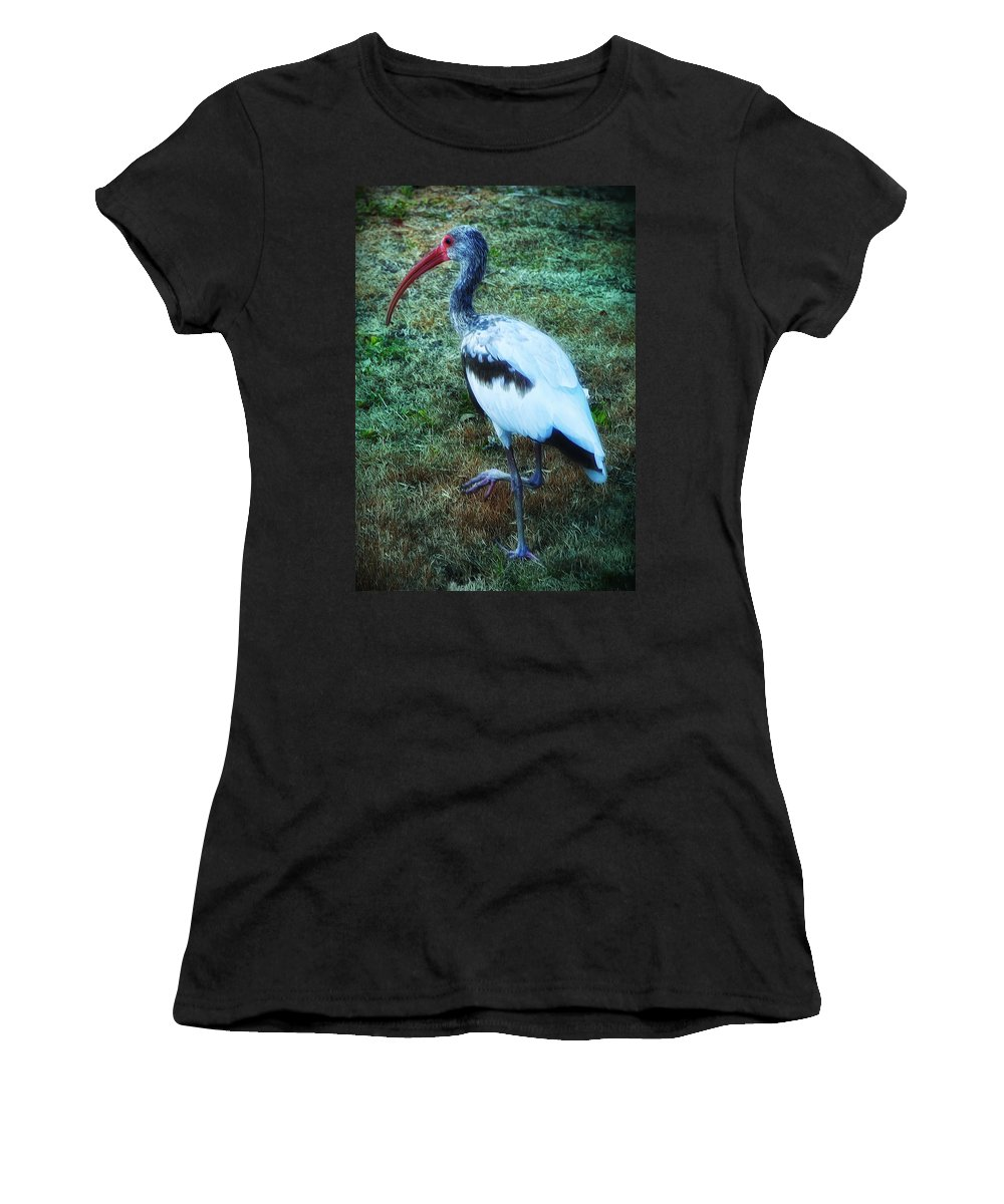 Key West Women's T-Shirt (Athletic Fit) featuring the photograph Ibis by Bill Cannon