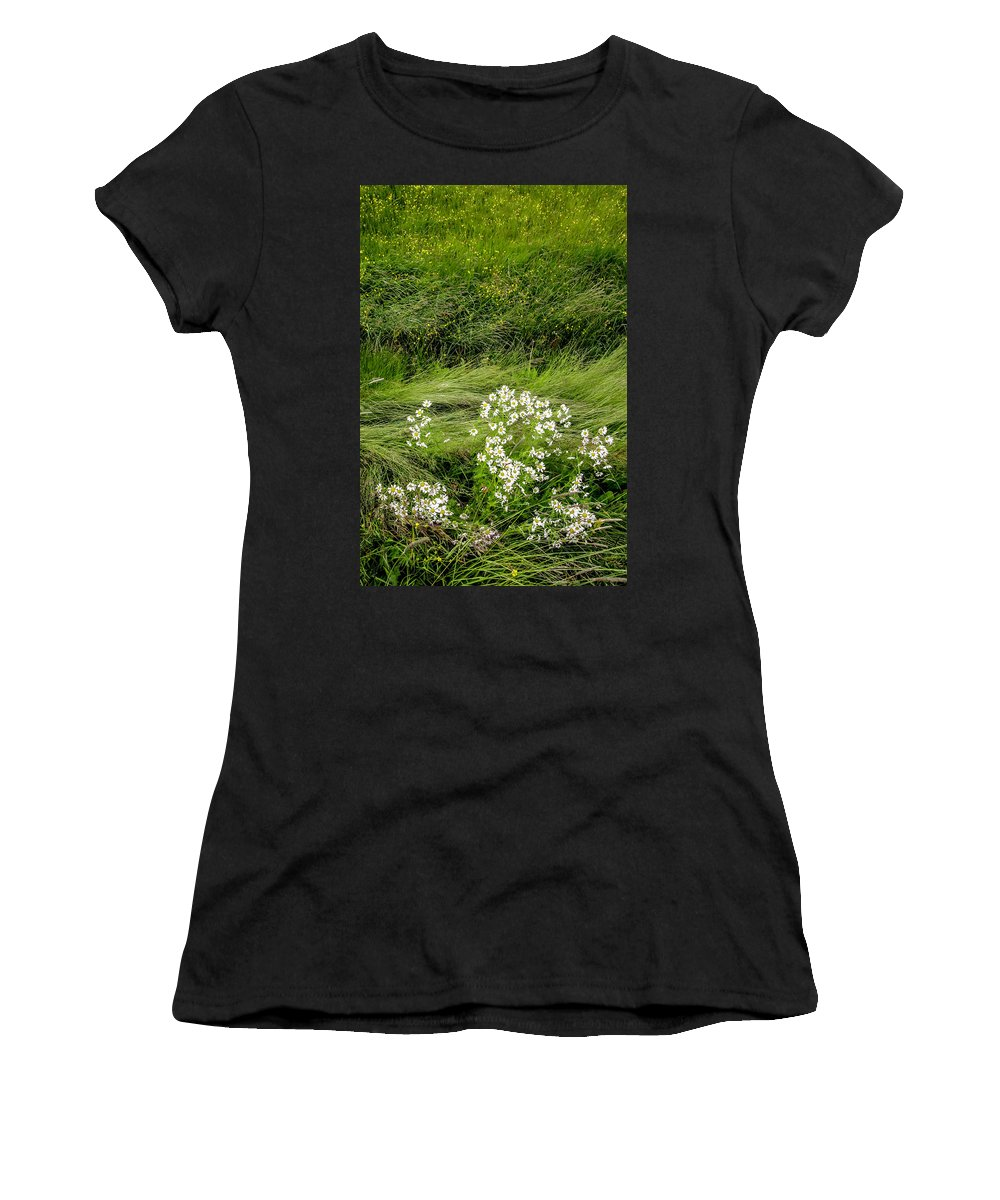 Daisy Women's T-Shirt (Athletic Fit) featuring the photograph Icelandic Daisies by KG Thienemann