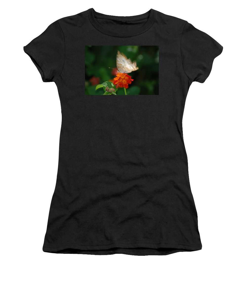 Butterfly Women's T-Shirt featuring the photograph In Living Color by Rob Hans