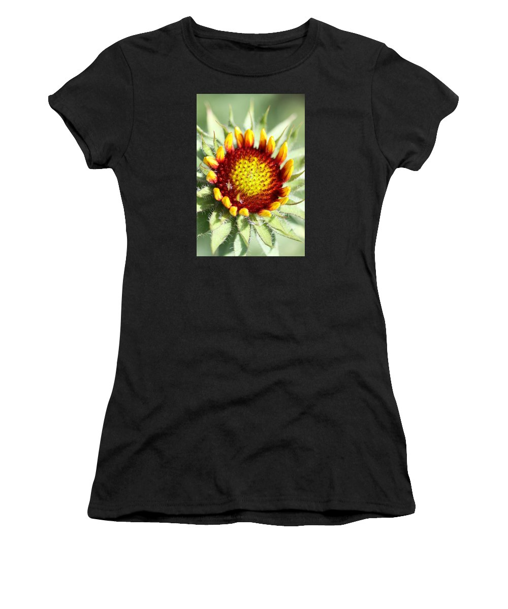 Indian Blanket Women's T-Shirt (Athletic Fit) featuring the photograph Inception by Christiane Schulze Art And Photography