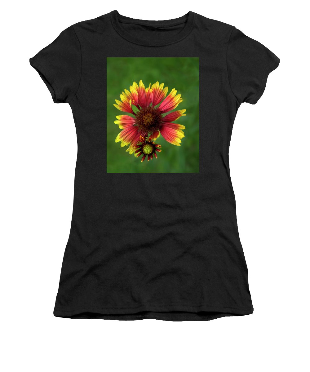 Blanket Flower Women's T-Shirt (Athletic Fit) featuring the photograph Indian Blanket Flower - Gaillardia by Mitch Spence