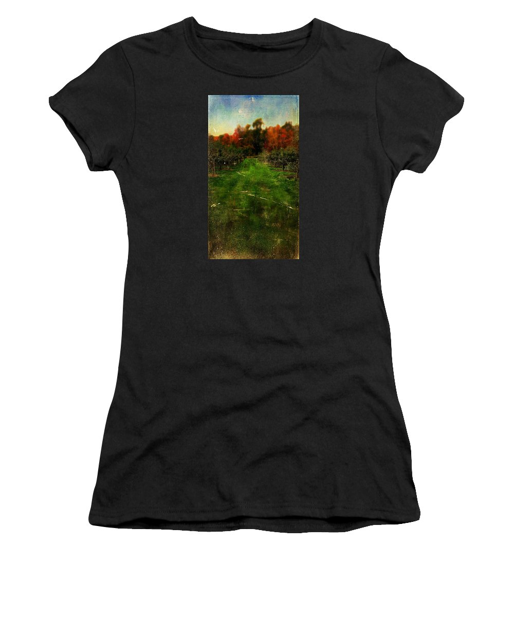 Apple Women's T-Shirt (Athletic Fit) featuring the photograph Into The Apple Orchard by Christina VanGinkel