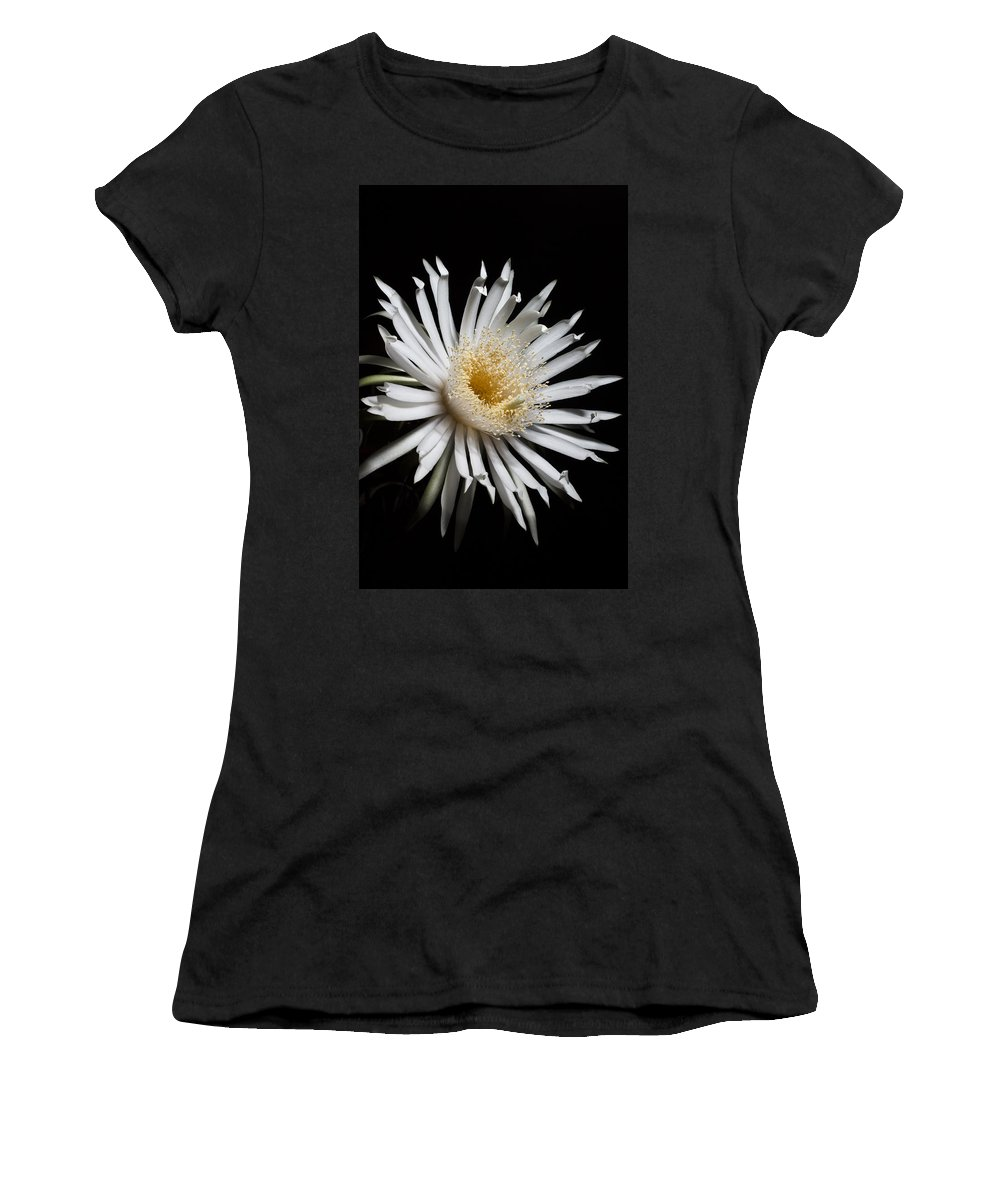 Barbed-wire Cactus Women's T-Shirt (Athletic Fit) featuring the photograph Irradia by Mario Morales Rubi