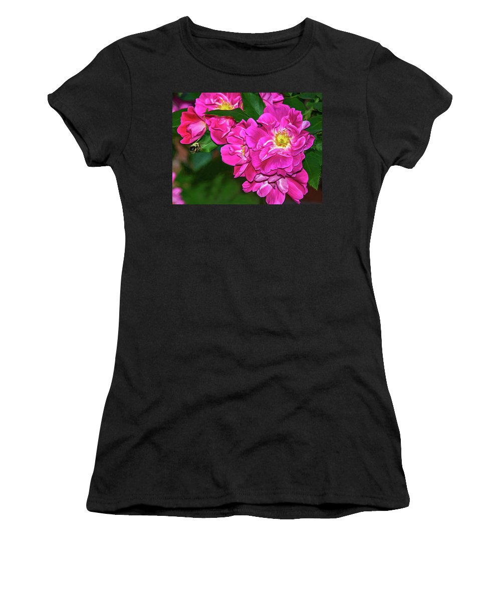 Bolton Women's T-Shirt featuring the photograph Irresistible Rose - Paint by Steve Harrington