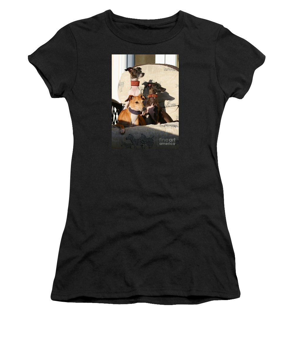Editorial Women's T-Shirt (Athletic Fit) featuring the photograph Italian Greyhounds by Angela Rath