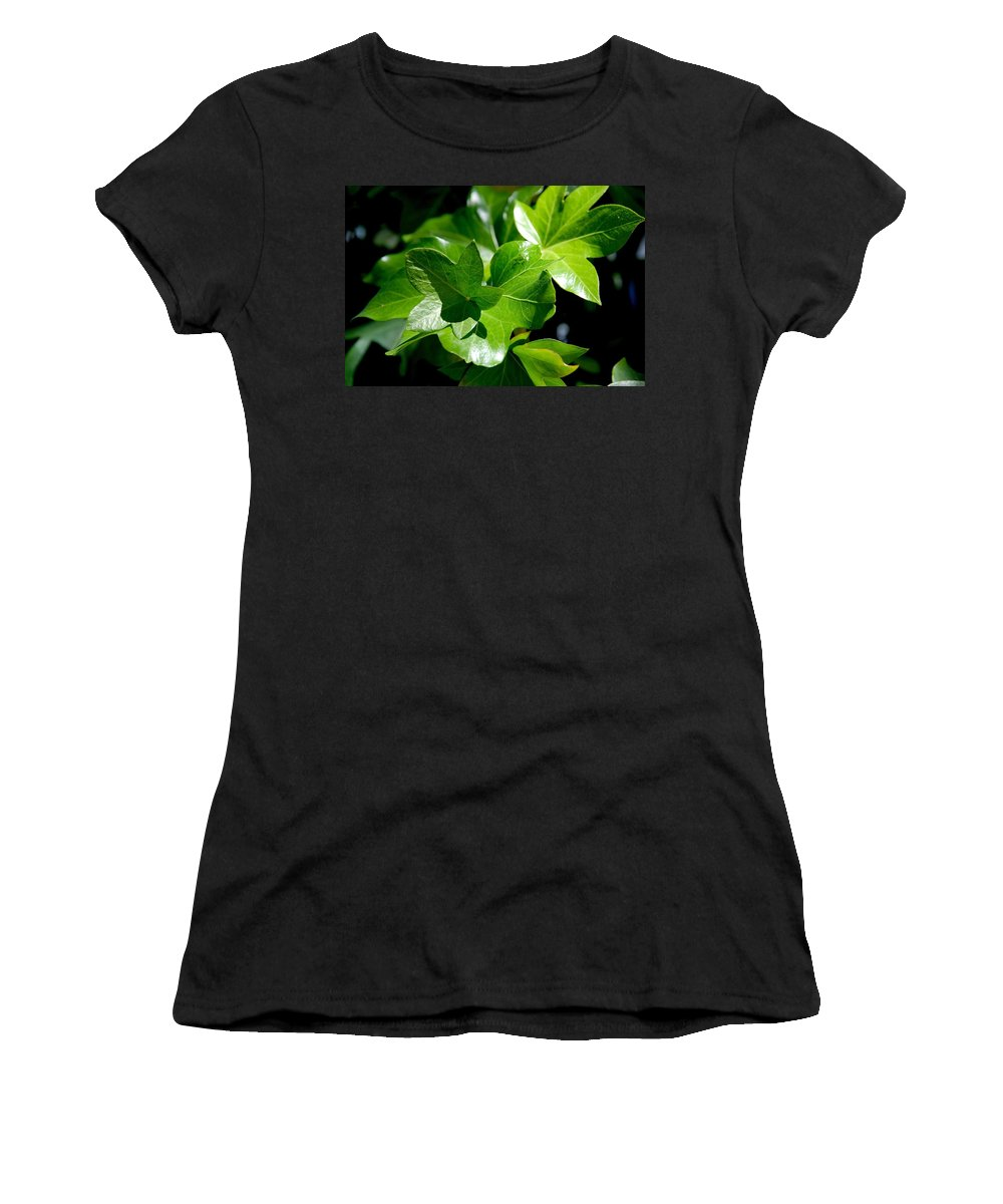 Photography Women's T-Shirt featuring the photograph Ivy In Sunlight by Susanne Van Hulst