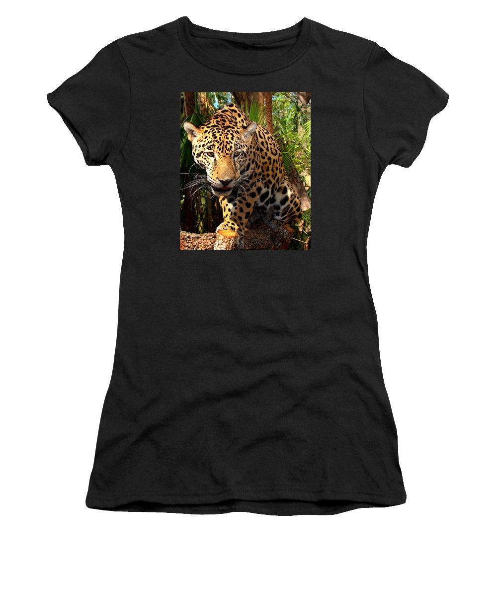 Jaguar Women's T-Shirt featuring the photograph Jaguar Adolescent by Ellen Henneke