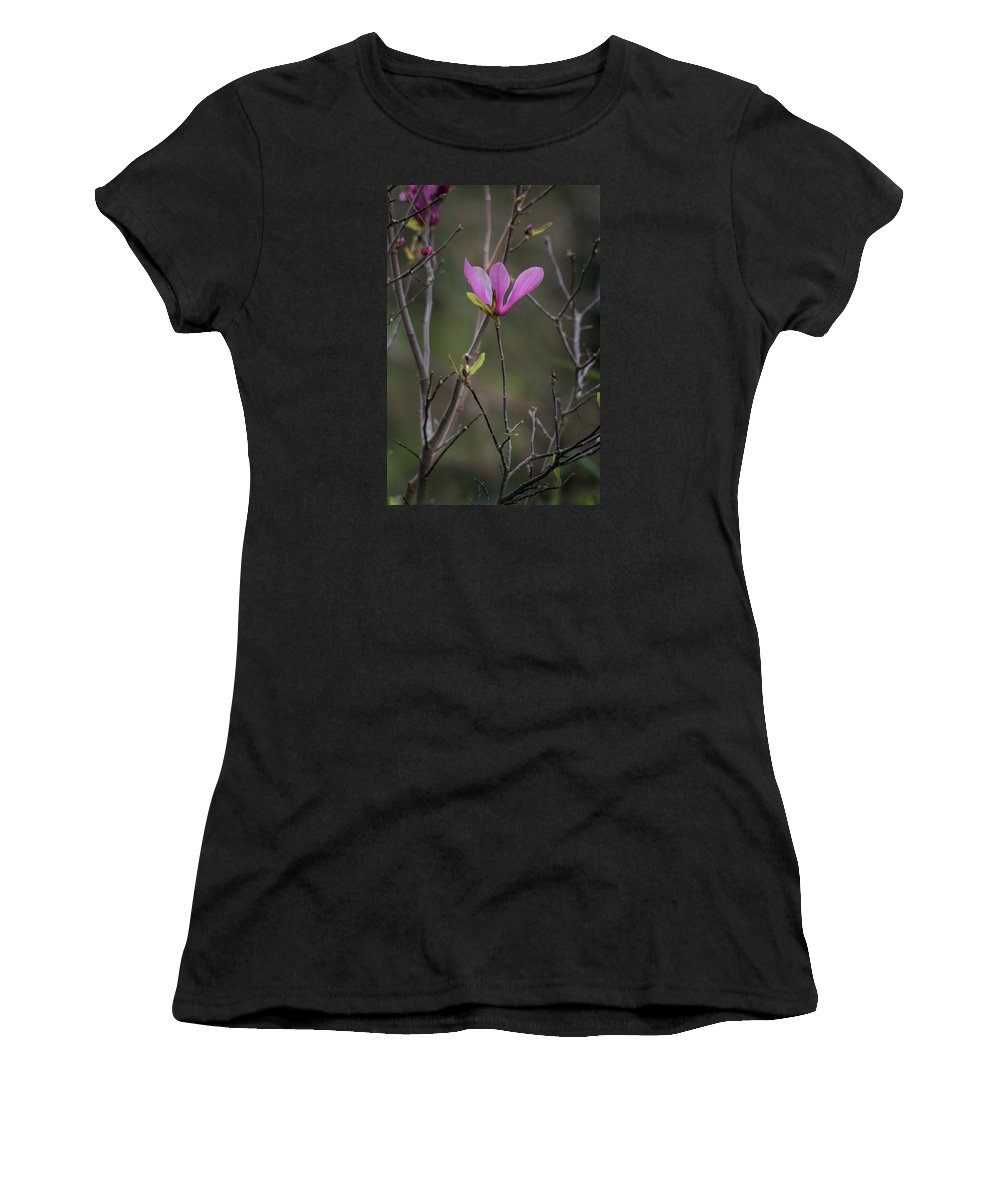 Pink Japanese Magnolia Women's T-Shirt featuring the photograph Japanese Magnolia by Diane Macdonald