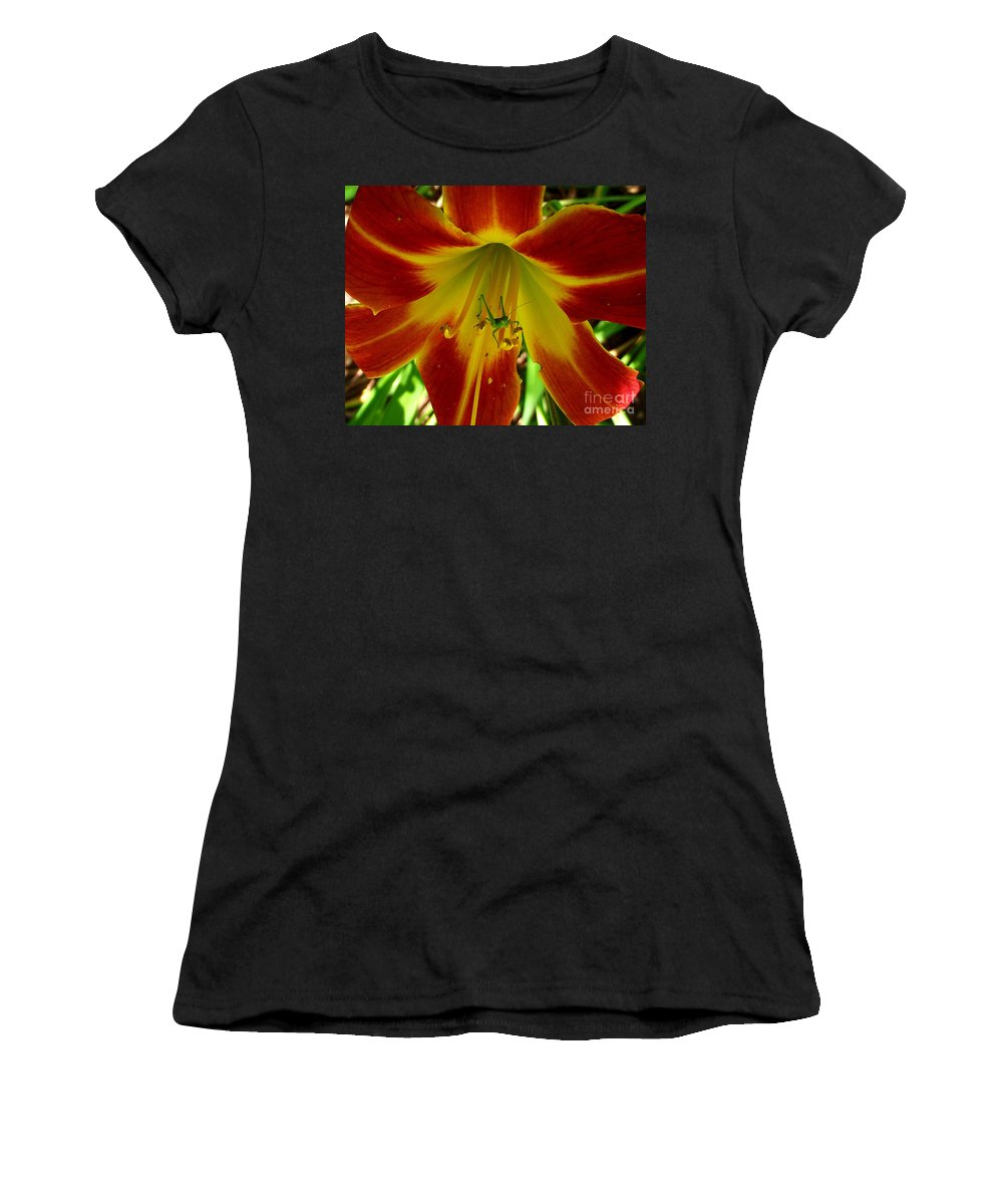 Katydid Women's T-Shirt (Athletic Fit) featuring the photograph Katydid Surprise by CapeScapes Fine Art Photography