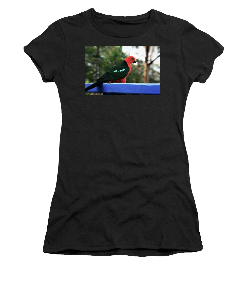 King Parrot Women's T-Shirt featuring the photograph King Of The Parrots by Douglas Barnard