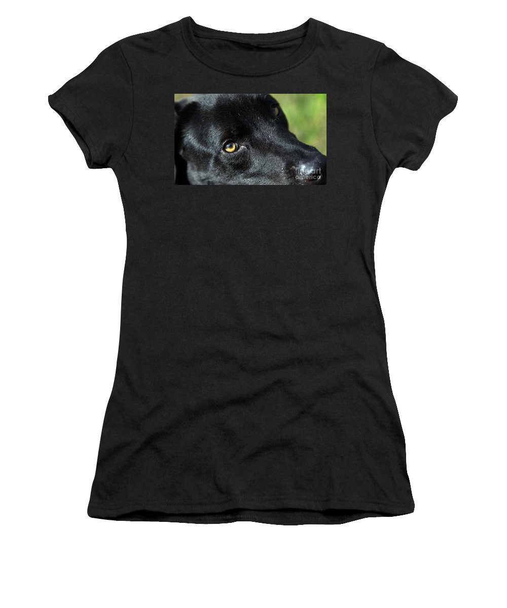 Lab Women's T-Shirt (Athletic Fit) featuring the photograph Lab Mix by Amanda Barcon