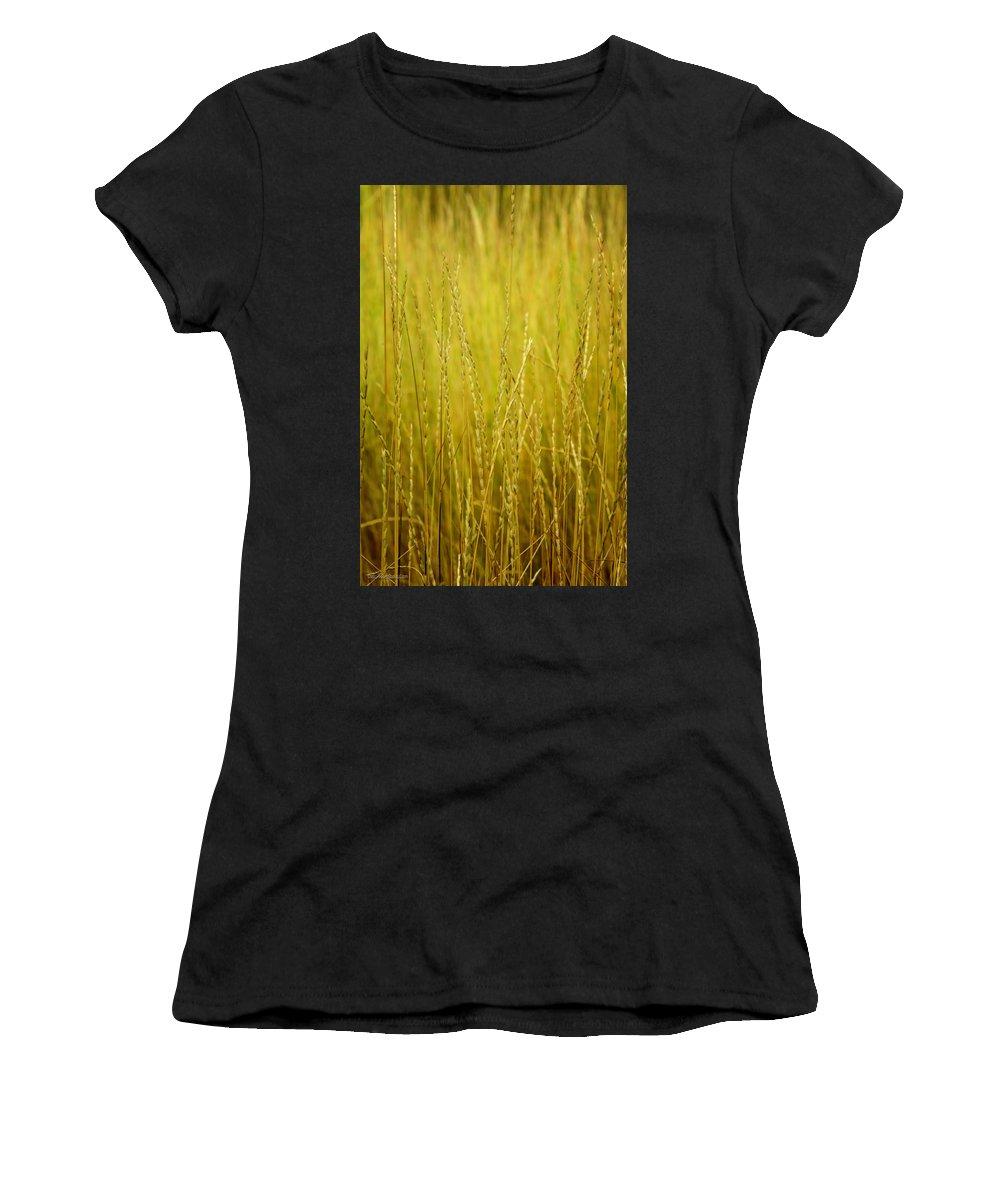 Lake Women's T-Shirt (Athletic Fit) featuring the photograph Lake Tahoe Wild Grasses by LeeAnn McLaneGoetz McLaneGoetzStudioLLCcom