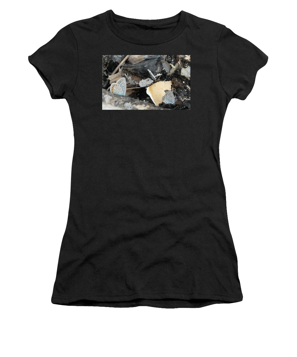Maculinea Arion Women's T-Shirt (Athletic Fit) featuring the photograph Large Blue Butterfly by Valerie Ornstein