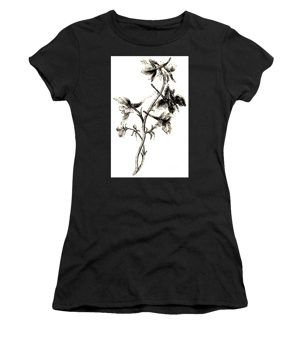 Delphinium Women's T-Shirt (Athletic Fit) featuring the drawing Larkspur by English School