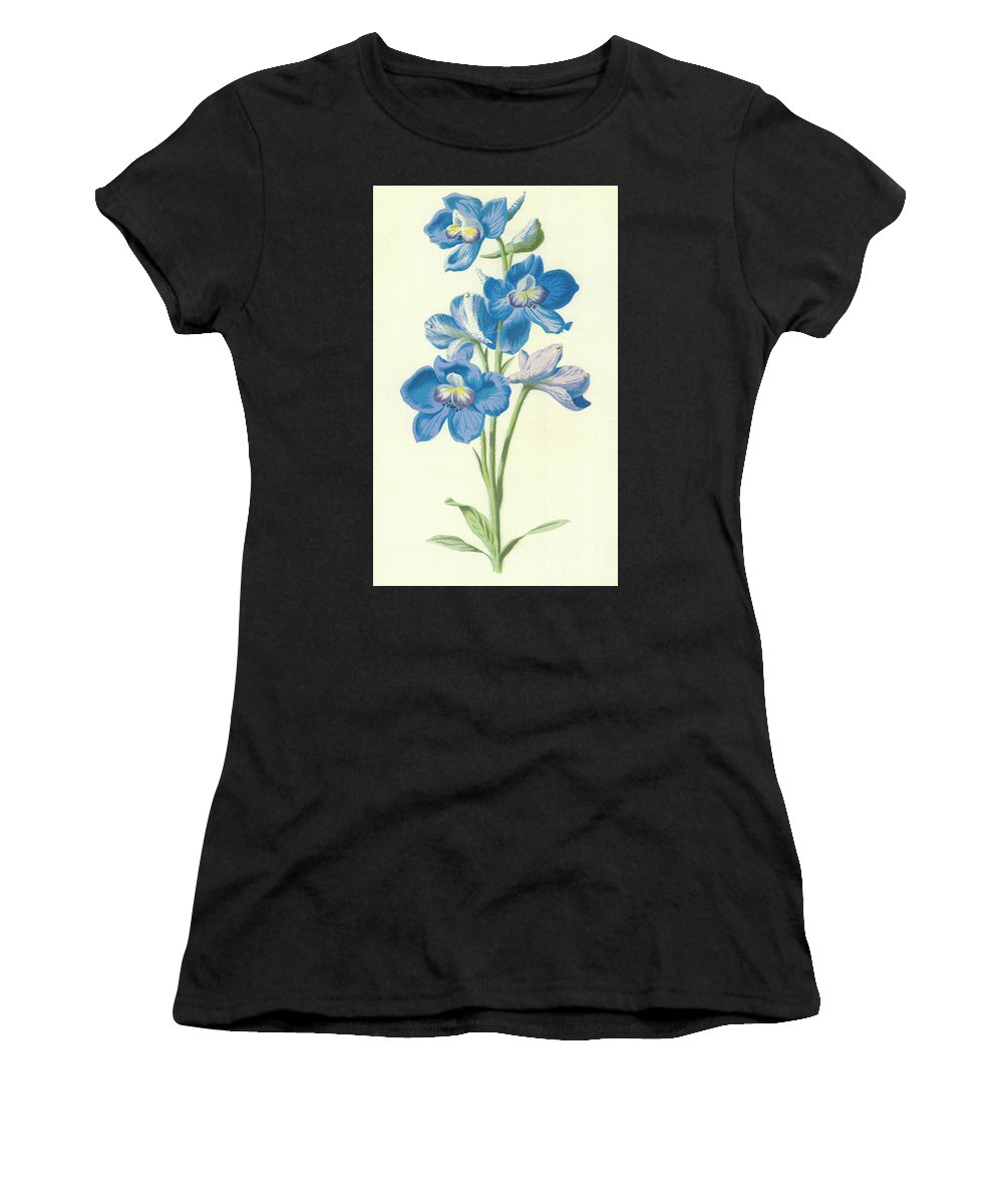 Delphinium Women's T-Shirt (Athletic Fit) featuring the painting Larkspur by Frederick Edward Hulme