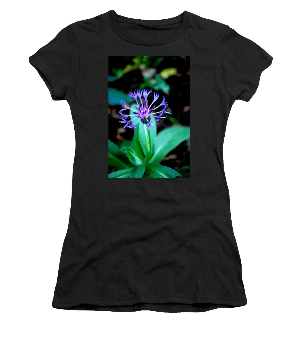 Digital Photograph Women's T-Shirt (Athletic Fit) featuring the photograph Last Flower In The Garden by David Lane