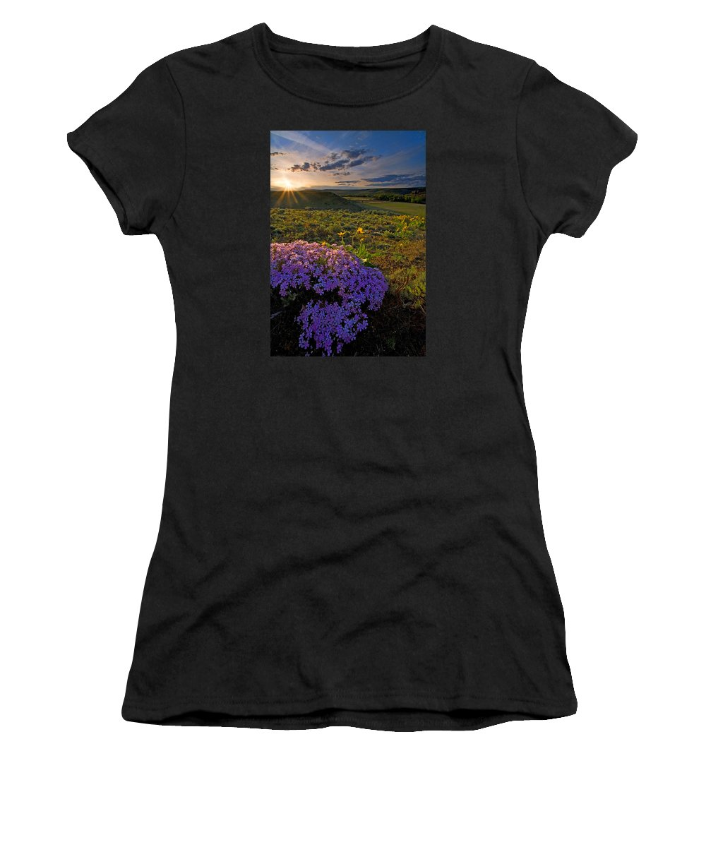 Wildflowers Women's T-Shirt (Athletic Fit) featuring the photograph Last Light Of Spring by Mike Dawson