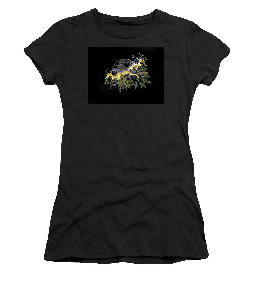 Sea Dragons Women's T-Shirt (Athletic Fit) featuring the photograph Leafy Sea Dragons by Anthony Jones