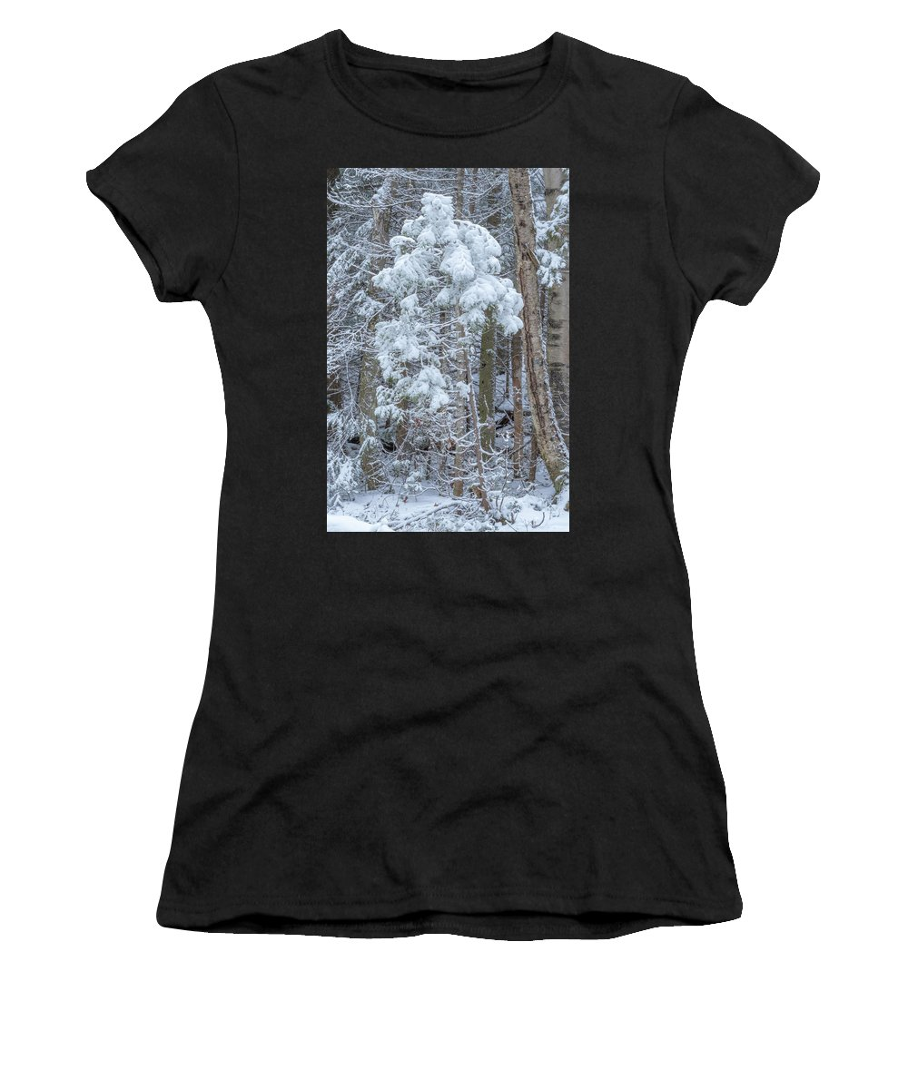 Marquette Women's T-Shirt (Athletic Fit) featuring the digital art Leaning by Bradley J Nelson