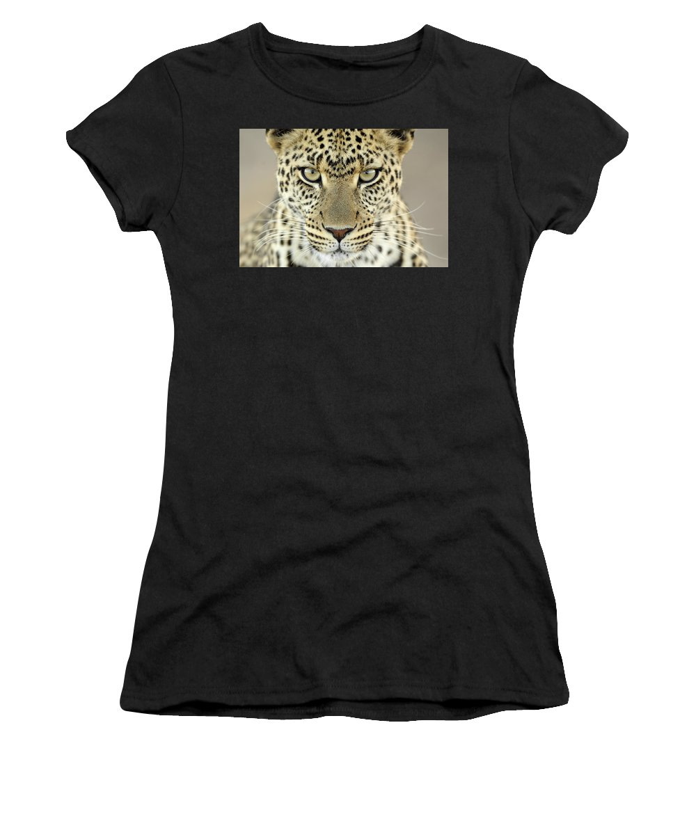 Fn Women's T-Shirt featuring the photograph Leopard Panthera Pardus Female by Martin Van Lokven