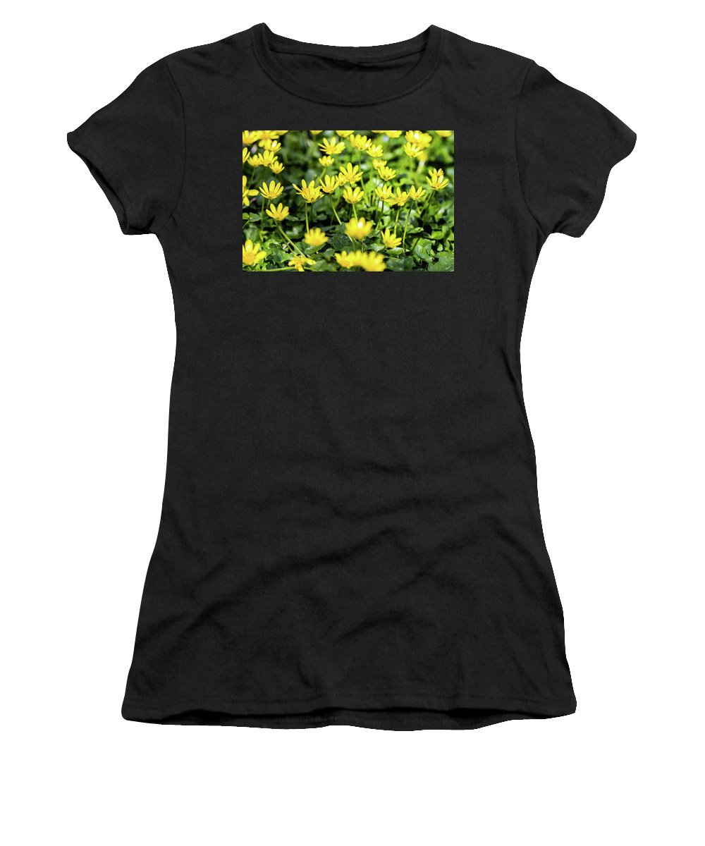 Lesser Celandine Women's T-Shirt (Athletic Fit) featuring the photograph Lesser Celandine by Nick Bywater
