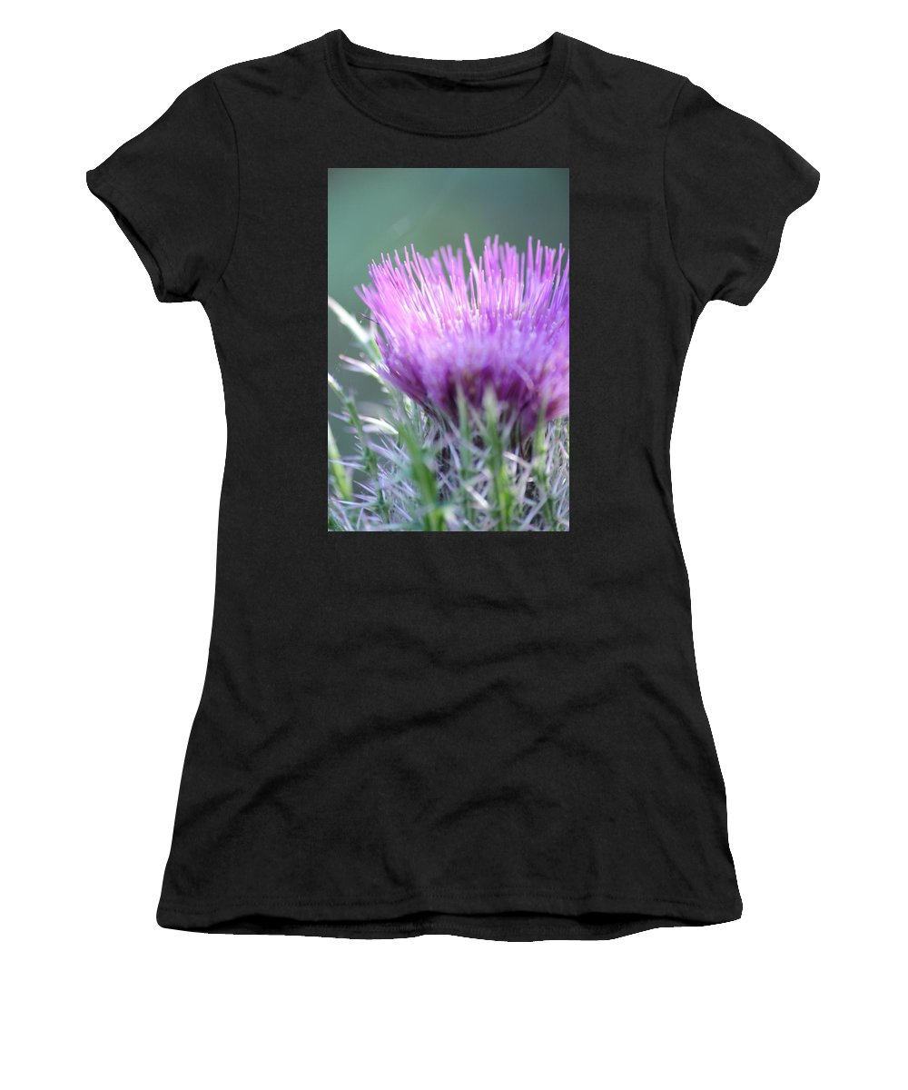Light On Thistle Women's T-Shirt (Athletic Fit) featuring the photograph Light On Thistle by Warren Thompson