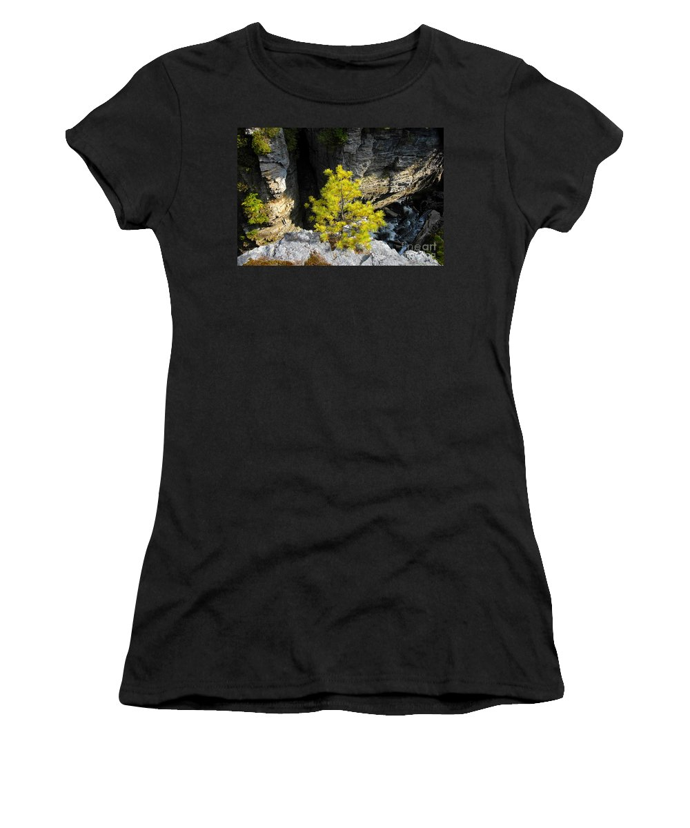 Tree Women's T-Shirt (Athletic Fit) featuring the photograph Living On The Edge by David Lee Thompson