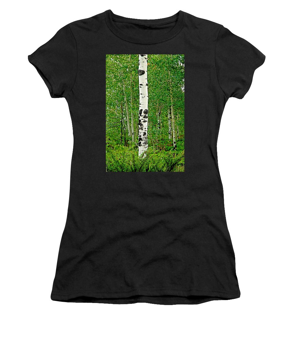Aspen Women's T-Shirt (Athletic Fit) featuring the photograph Lone Aspen by Robert Meyers-Lussier