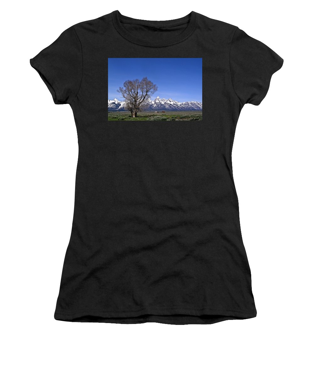 Tree Women's T-Shirt (Athletic Fit) featuring the photograph Lone Tree At Tetons by Douglas Barnett