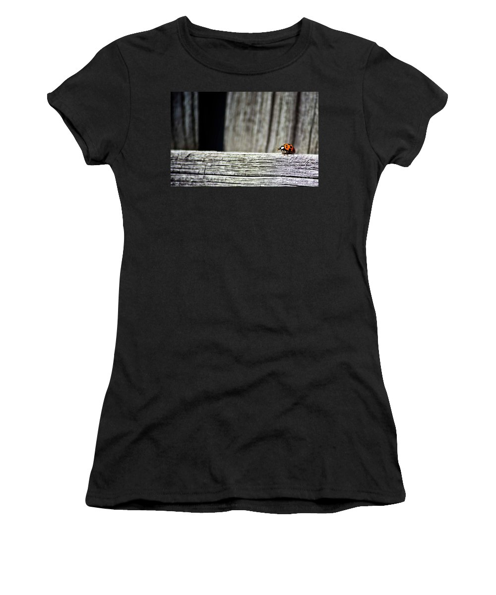 Air Women's T-Shirt featuring the photograph Lonely Ladybug by Ms Judi