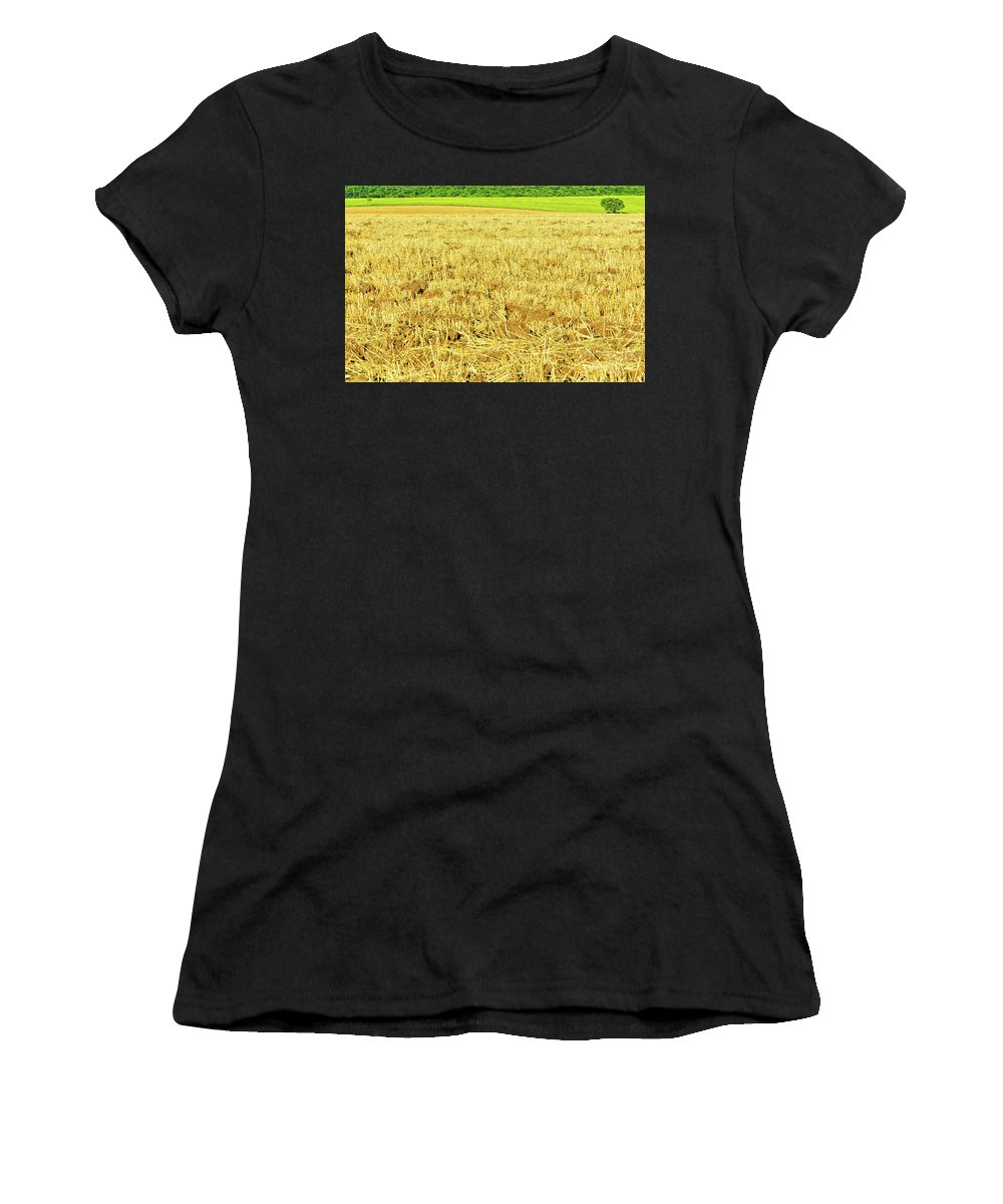 Countryside Women's T-Shirt featuring the photograph Lonely Tree And Stubble Filed by Silvia Ganora
