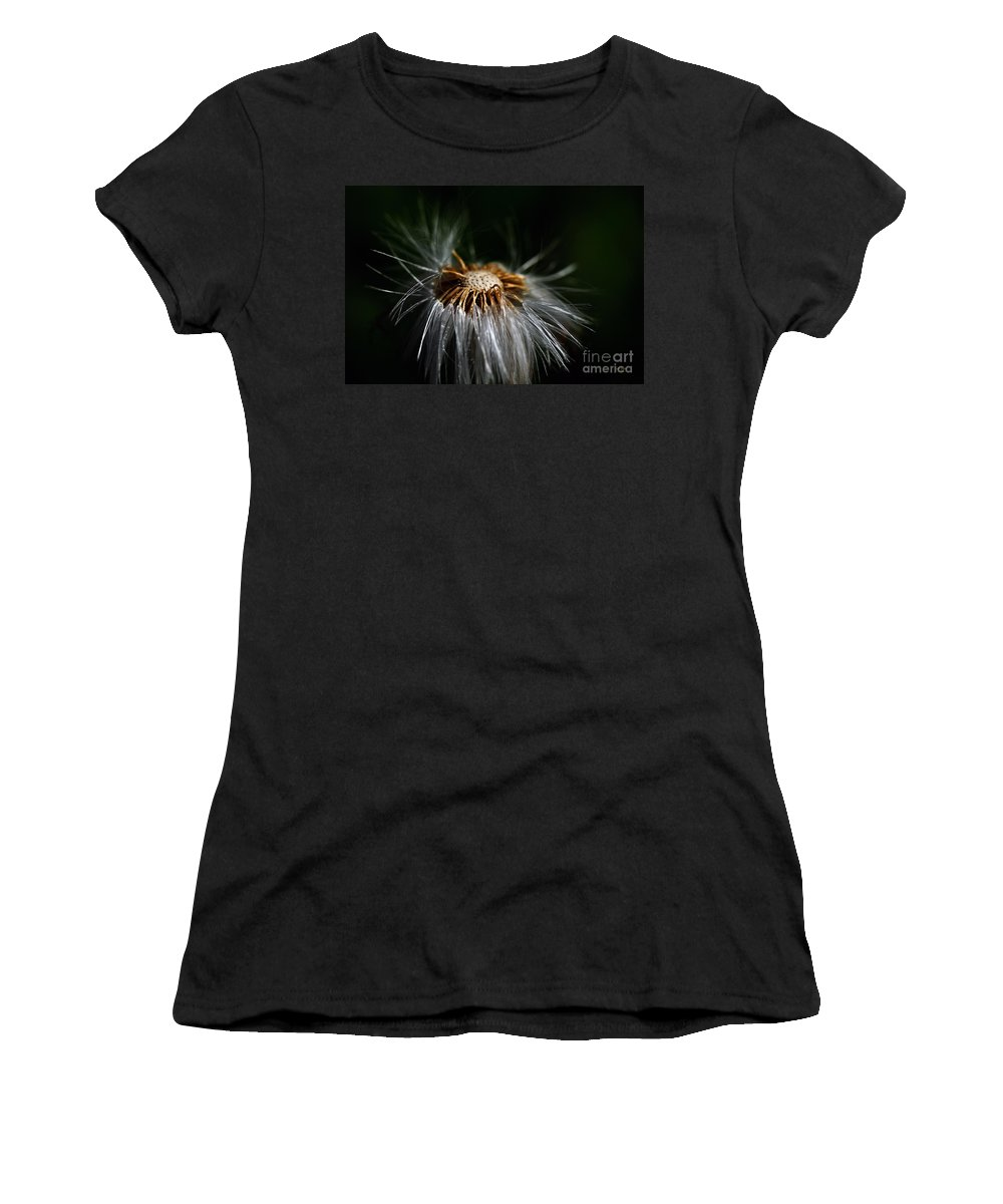Dandelion Women's T-Shirt featuring the photograph Losing It by Lois Bryan